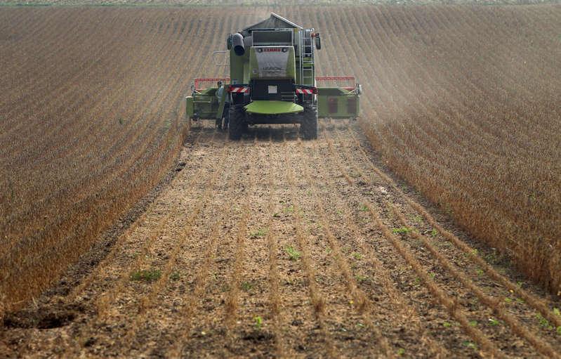 Il ne sera finalement pas interdit d'utiliser l'imidaclopride, un pesticide néonicotinoïde, au Canada.