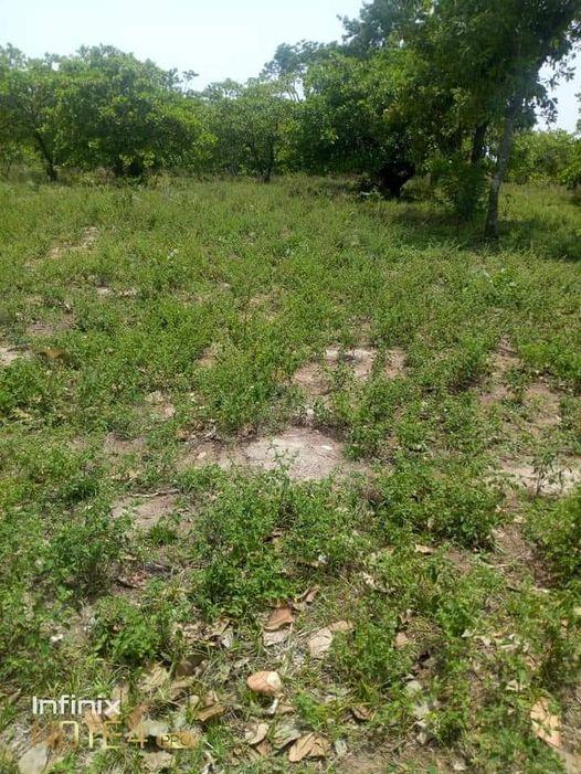 Bénin : un homme tente de tuer son petit frère avec son fusil, la raison