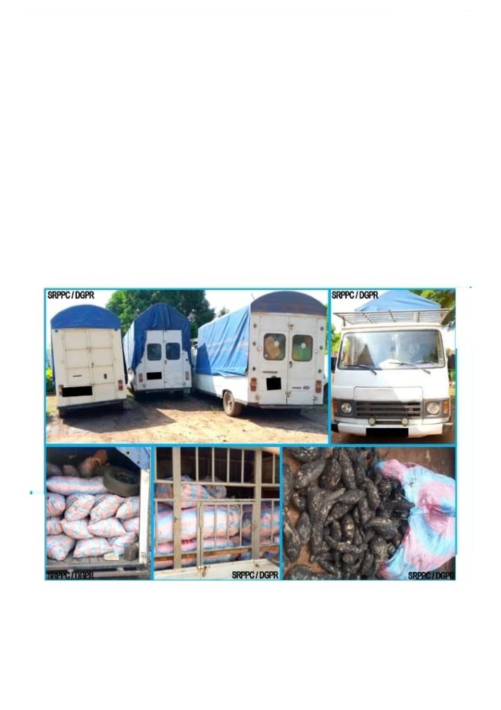Bénin/Interdiction de l'importation des produits vivriers : Trois tonnes de patates douces saisies à Azovè par la Police